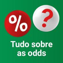 bingo online - probabilidades e pagamentos